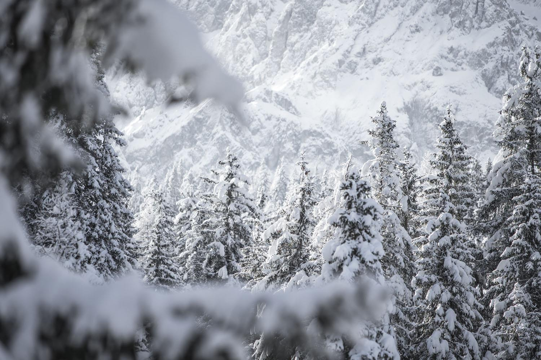 Ski kamp Sexten, 16. – 19.12.2021.